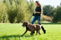Happy young woman walking  with her dog in the park
